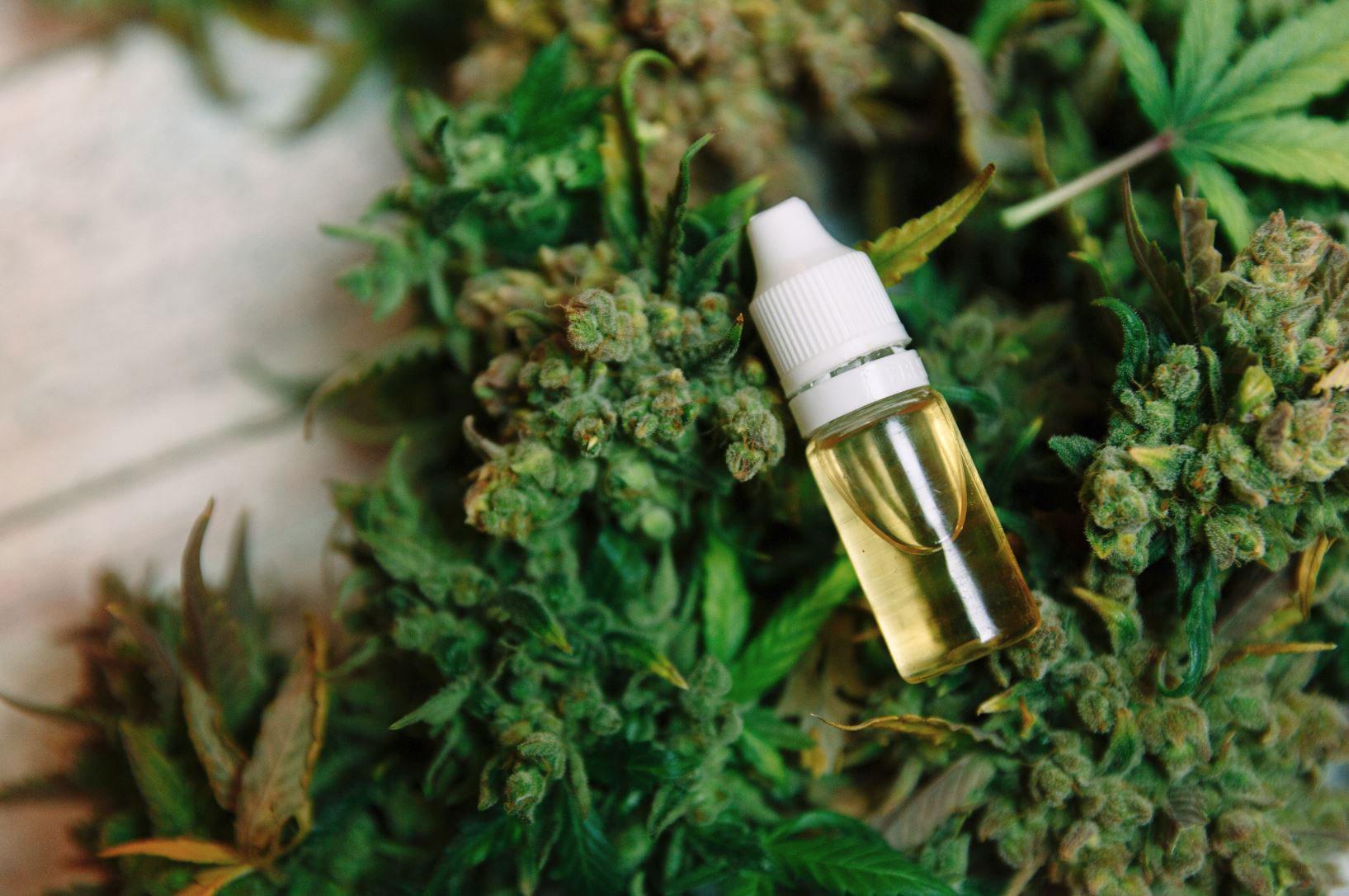 Image de pied de page - Conférence canadienne sur le cannabis
